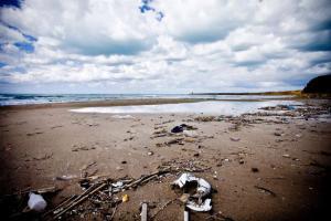 spiaggia magaggiari ripuliamo cinisi terrasini